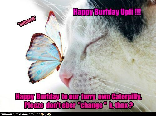 Happy Burfday Upfi !!!