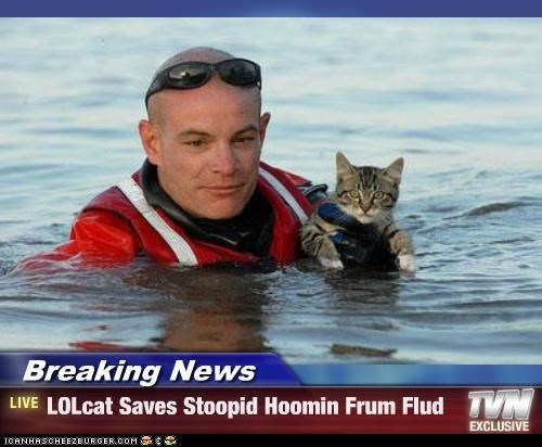 Breaking News - LOLcat Saves Stoopid Hoomin Frum Flud