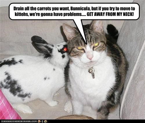 Drain all the carrots you want, Bunnicula, but if you try to move to kittehs, we're gonna have problems..... GET AWAY FROM MY NECK!
