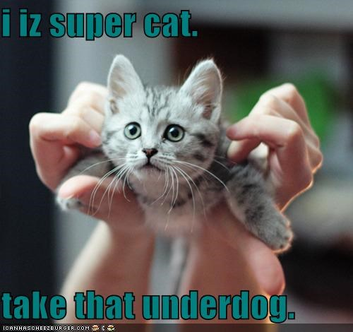 i iz super cat.  take that underdog.