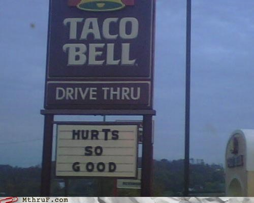 fast food,sign,taco bell