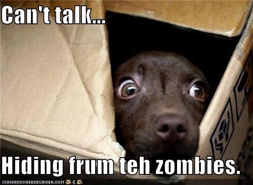Can't talk...  Hiding frum teh zombies.