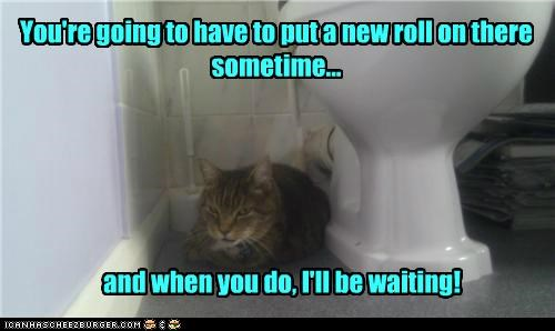 caption,captioned,cat,eventually,lurking,need,new,promise,roll,sometime,threat,toilet,toilet paper,waiting,when