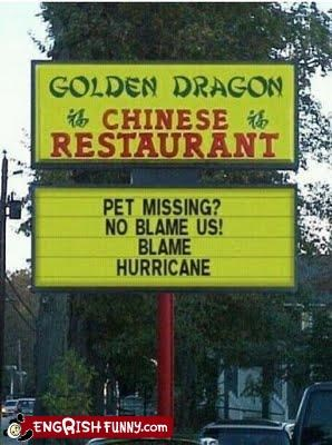 business,hurricane irene,news,pets,sign,storm
