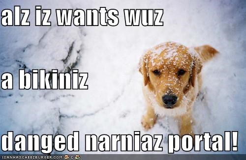 alz iz wants wuz a bikiniz danged narniaz portal!
