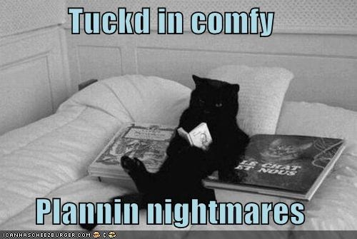 Tuckd in comfy  Plannin nightmares