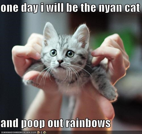 one day i will be the nyan cat  and poop out rainbows