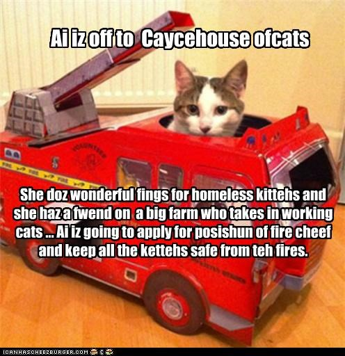 Ai iz off to  Caycehouse ofcats