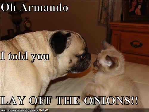 Oh Armando I told you  LAY OFF THE ONIONS!!