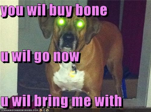 you wil buy bone u wil go now  u wil bring me with