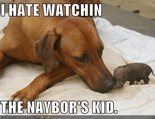 I HATE WATCHIN  THE NAYBOR'S KID.