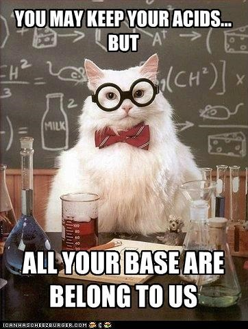 Chemistry Cat: Somebody Set Us Up the Lab
