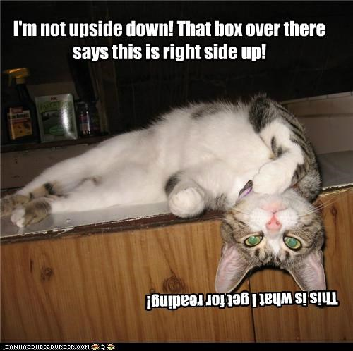 I'm not upside down! That box over there says this is right side up!