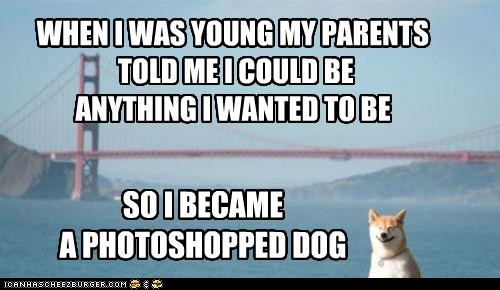 WHEN I WAS YOUNG MY PARENTS  TOLD ME I COULD BE ANYTHING I WANTED TO BE