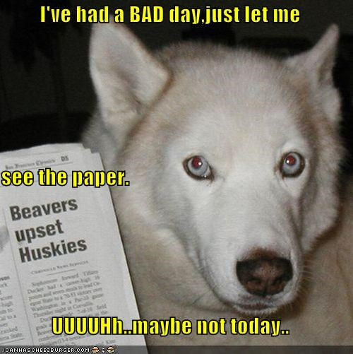 I've had a BAD day,just let me see the paper. UUUUHh..maybe not today..