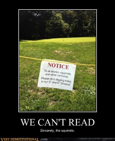 hilarious,illiterate,notice,sign,squirrels