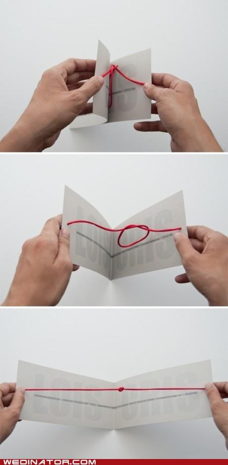 funny wedding photos,Hall of Fame,tie the knot,Wedding Invitation