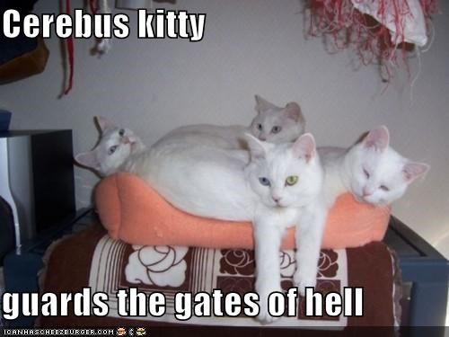 Cerebus kitty  guards the gates of hell
