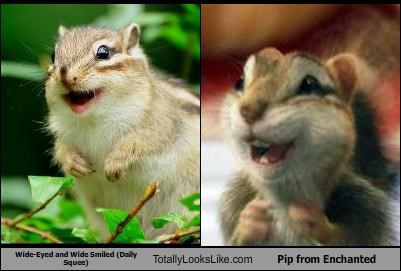 "Wide-Eyed and Wide Smiled Totally Looks Like Pip from ""Enchanted"""