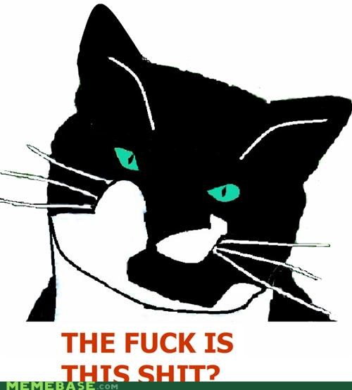 I'm trying to make a cat rage face.