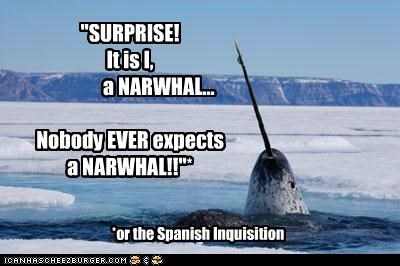 """""""SURPRISE!   It is I,                a NARWHAL...  Nobody EVER expects  a NARWHAL!!""""*"""