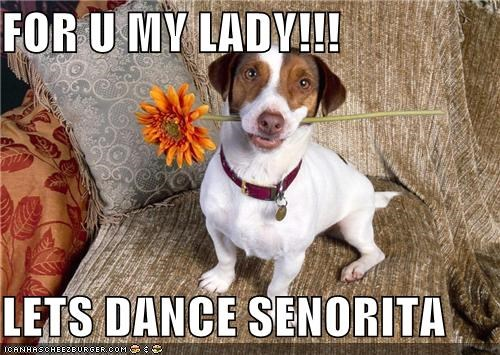 FOR U MY LADY!!!  LETS DANCE SENORITA