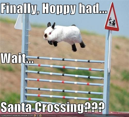 Finally, Hoppy had... Wait... Santa Crossing???