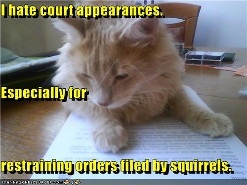 appearances,caption,captioned,cat,court,especially,filed,for,hate,orders,paper,papers,restraining,squirrels