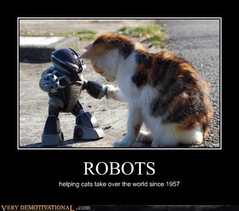 cat,hilarious,robos,world domination