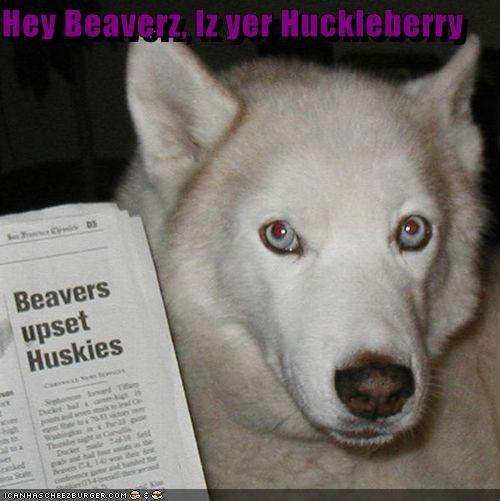 Hey Beaverz, Iz yer Huckleberry