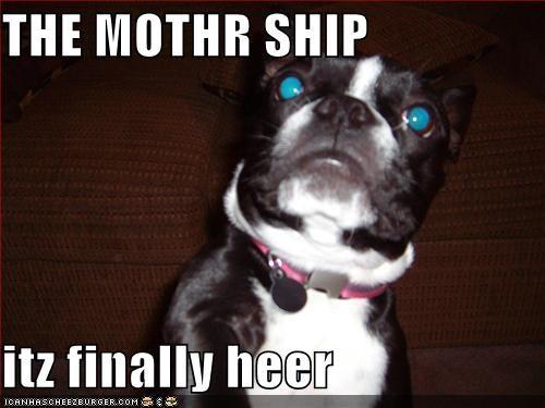 THE MOTHR SHIP