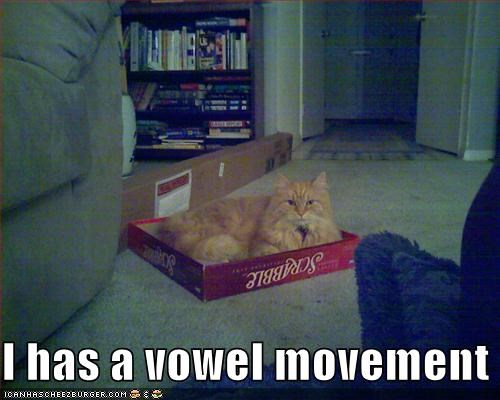 I has a vowel movement