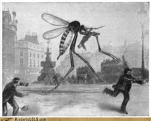 If Insects Were Bigger...Life Would Be Terrifying!