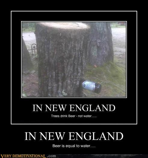 IN NEW ENGLAND