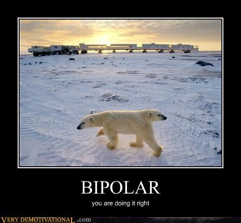 bipolar,hilarious,polar bear