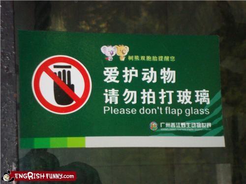 flap,sign,warning,wings,zoo