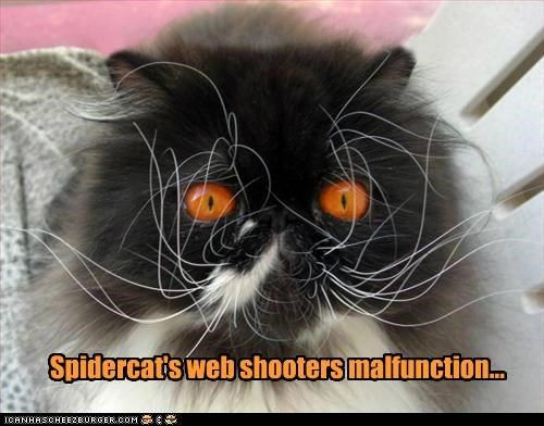 Spidercat's web shooters malfunction...