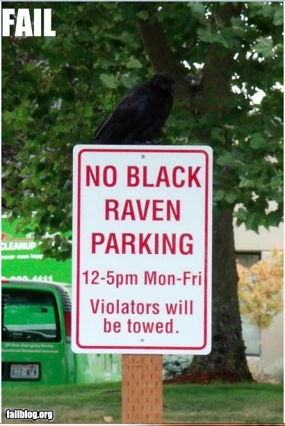 Oddly Specific: Raven Without a Cause
