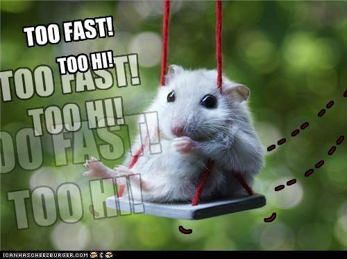 too fast! too hi!