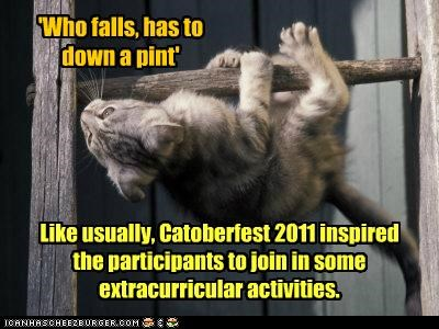 Like usually, Catoberfest 2011 inspired the participants to join in some extracurricular activities.