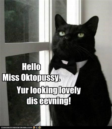 Da Bond Cat