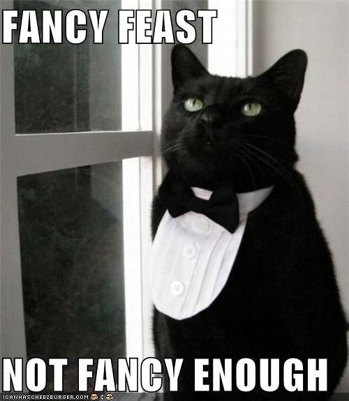 FANCY FEAST  NOT FANCY ENOUGH