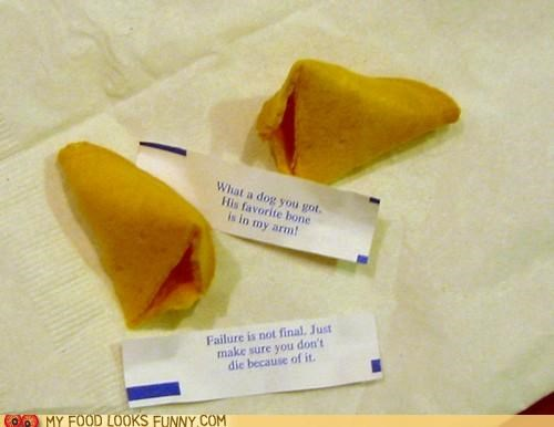 Incredibly Helpful Fortune Cookies