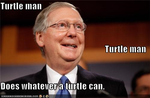 Turtle man Turtle man Does whatever a turtle can.