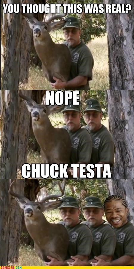 Yo Dawg, I Heard You...Nope! Chuck Testa