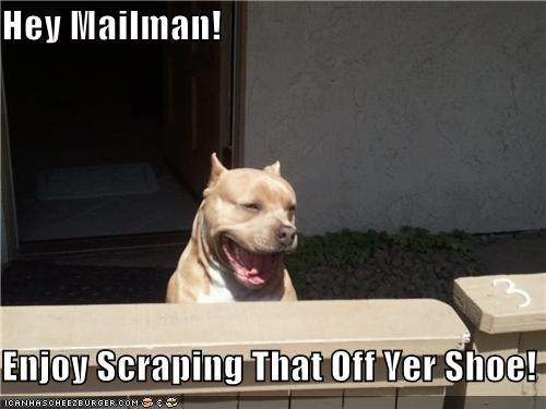 Hey Mailman!  Enjoy Scraping That Off Yer Shoe!
