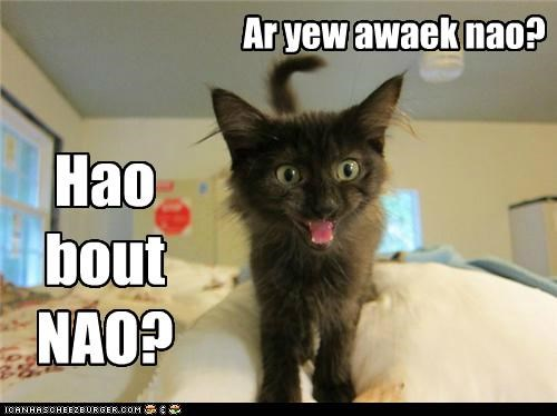 Hao bout NAO?