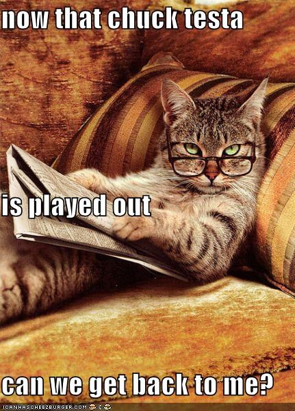 Chuck Testa,glasses,memecats,Memes,newspaper,old,overdone,played out,reading