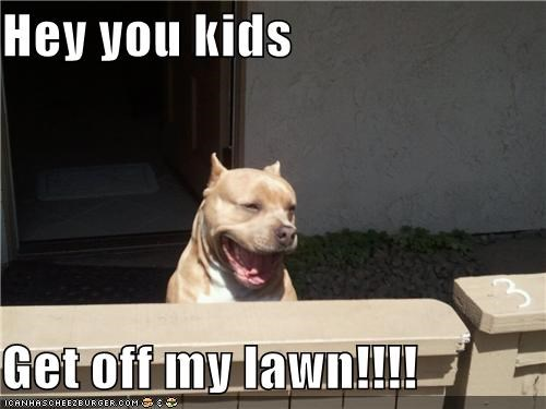 Hey you kids  Get off my lawn!!!!