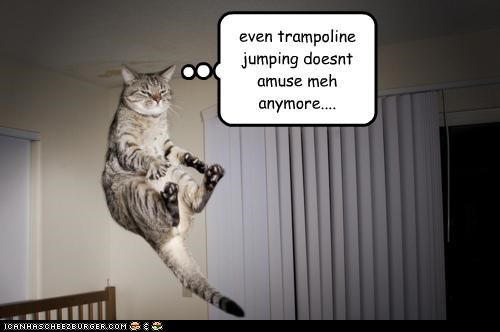 even trampoline jumping doesnt amuse meh anymore....